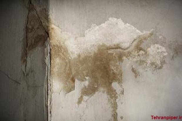 رفع نم دیوار گچی